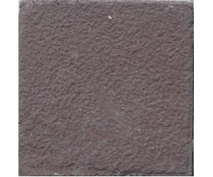Textured Paver